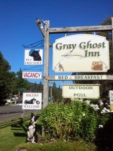 Gray Ghost Inn - Pet Friendly