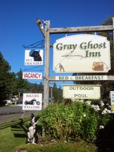 Gray Ghost Inn - Pet Friendly