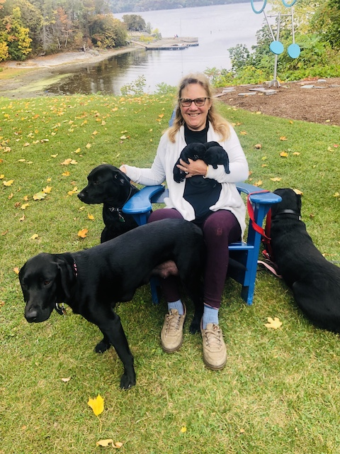 Carina with Black Labrador dogs